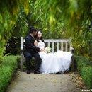 130x130_sq_1209076348916-allegro_photo_bench_tree
