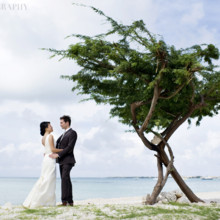 220x220 sq 1456524547258 destination weddingwestin arubajewishwedding