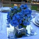 130x130_sq_1223523867907-flowers051