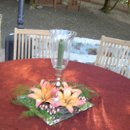 130x130_sq_1223524033579-flowers055