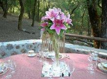 220x220_1223521976250-flowers053