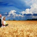 130x130 sq 1253540229125 bridegroomwheatfield