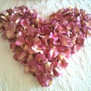 130x130_sq_1337811510990-5.16.201220thanniversarypetalheartfromflyboynaturalsrosepetals