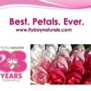 130x130 sq 1428601812628 best.flyboy naturals rose petals.6