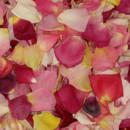 130x130 sq 1428601831030 brightblendpetals.flyboy naturals rose petals