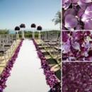 130x130 sq 1428601938915 flyboy naturals rose petals. purples.1