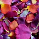 130x130 sq 1428601967321 romanticrendezvouspetals.flyboy naturals rose peta