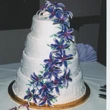 220x220 sq 1172089765513 purpleflowercake
