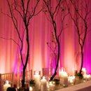 130x130_sq_1213635584305-pinklightingwihmanzanita
