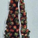 130x130_sq_1340394119422-chocolatestrawtreelarge