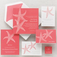Imperial Starfish - Two large starfish embellish the side of this contemporary square wedding invitation. Exclusively Weddings offers a choice of four tropical hues: coral, seashell yellow, Caribbean blue, and sand dune. It's the perfect invite for your destination or beach themed wedding. Order Your Free Sample Today!