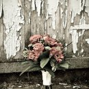 130x130 sq 1288289641375 autumnphotographyrusticroseandgreenbouquet