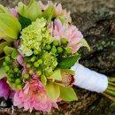 130x130 sq 1288289644125 bumblebeelandingpinkdahliapurpleandgreenorchids