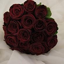 220x220 sq 1329062276812 weddingwire