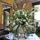 This dramatic display features an infusion of white and green: white Asiatic lilies, white roses, white dendrobium orchids, white larkspur and assorted greens in an antique crackle urn--perfect for an outdoor reception!