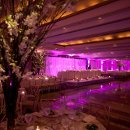 130x130 sq 1357657477942 payalnealwedding2492