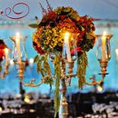 130x130 sq 1363978354398 botanicgardensfallwedding15