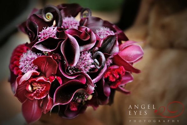 photo 15 of Angel Eyes Photography