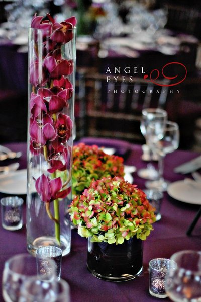 photo 42 of Angel Eyes Photography