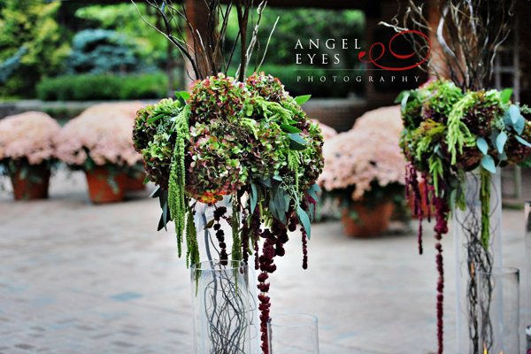 photo 28 of Angel Eyes Photography