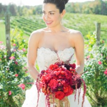 220x220 sq 1418315844190 bride and bouquet