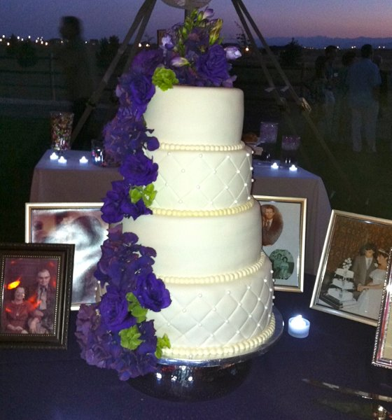 best wedding cakes fort collins babette s feast catering and cakes bakery fort 11541