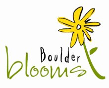 220x220 1235681241872 boulderbloomscolorflower2copy