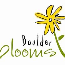 220x220 sq 1235681241872 boulderbloomscolorflower2copy