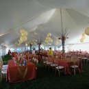 130x130 sq 1294178020052 decorationsselfhunglanterns4