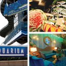 130x130 sq 1342045591386 91downtownaquarium2pic