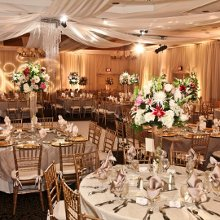220x220 sq 1339530472089 sheratonwedding3
