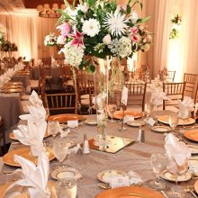 220x220 sq 1339530472764 sheratonwedding