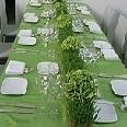 130x130 sq 1178125263813  wsb 116x137 green+setting