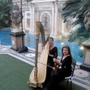 130x130 sq 1452983966 621a5c1af68f21e2 1381721984294 esther underhay versace mansion the elegant harp2