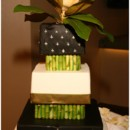 130x130 sq 1395005826119 black white and green cake   a memory lane even