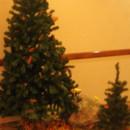 130x130 sq 1395007148370 orange and pine mountain weddings   a memory lane
