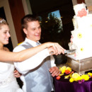 130x130_sq_1395007987611-purple-yellow--white-cake-cutting---a-memory-lane-