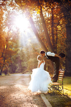 220x220_1406902269463-country-club-weddings-a-memory-lane-event
