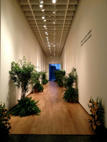 orlando museum of art reviews orlando venue
