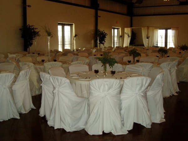 photo 4 of Chair Covers by Yoli