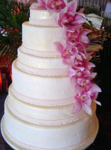 Couture Cakes photo