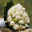 130x130_sq_1390596657627-tulip