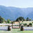 Gorge-ous Weddings at Wind Mountain Ranch Reviews