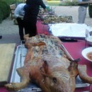 130x130 sq 1486148322152 pig on buffet