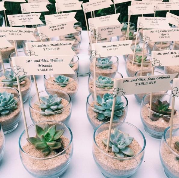 1508522666276 Succulent Miami wedding planner