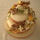 130x130 sq 1331830709817 weddingcake11