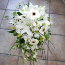 130x130 sq 1416314131289 daisy cascade3