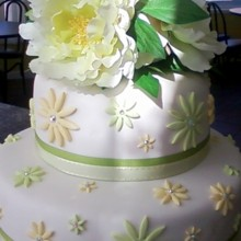 220x220 sq 1379001222081 stacked   bridal shower   green yellow