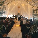 130x130_sq_1345579276794-weddinginterior8
