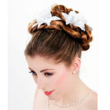 220x220 sq 1377987066342 prom hair updos